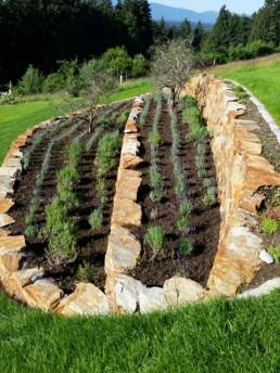 Klee_Gartenbau_Beetbepflanzung