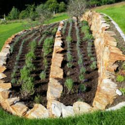 Klee_Landschaftsbau_Beetbepflanzung